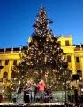 Neujahrsmarkt vor dem Schloß Schönbrunn 2019/2020 | Wien